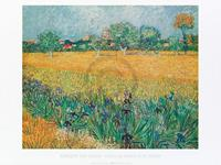 PGM Vincent Van Gogh - Vista di Arles Con Irises Kunstdruk 80x60cm
