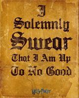 GBeye Harry Potter I Solemnly Swear Poster 40x50cm
