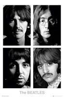 GBeye The Beatles White Album Poster 61x91,5cm
