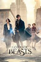 GBeye Fantastic Beasts and Where to Find Them Street Poster 61x91,5cm