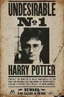 GBeye Harry Potter Undesirable No 1 Poster 61x91,5cm