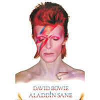 Pyramid David Bowie Aladdin Sane Poster 61x91,5cm