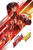 Pyramid Ant-Man and the Wasp One Sheet Poster 61x91,5cm