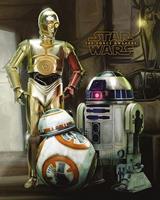 Pyramid Star Wars Episode VII Droids Poster 40x50cm