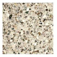 Terre d'Azur Terre d´Azur Granito terrazzo vloertegel bologna 40x40 gerectificeerd