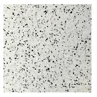 Terre d'Azur Terre d´Azur Granito terrazzo vloertegel parma 40x40 gerectificeerd