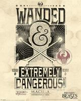 Pyramid Fantastic Beasts Extremely Dangerous Poster 40x50cm