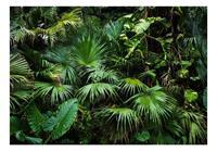 Artgeist Sunny Jungle Vlies Fotobehang 100x70cm