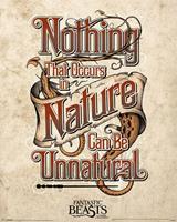 Pyramid Fantastic Beasts Unnatural Poster 40x50cm
