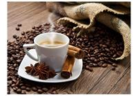 Artgeist Star Anise Coffee Vlies Fotobehang 350x270cm