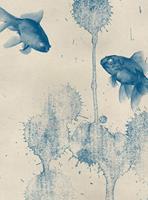Wizard+Genius Blue Fish Vlies Fotobehang 192x260cm 4-banen