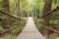 Papermoon Hangbrug Vlies Fotobehang 350x260cm