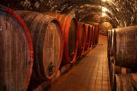 Dimex Wine Barrel Vlies Fotobehang 375x250cm 5-banen
