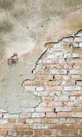 Dimex Grunge Wall Vlies Fotobehang 150x250cm 2-banen
