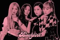 GBeye Black Pink Group Pink Poster 61x91,5cm