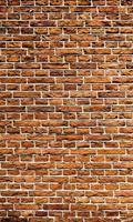 Dimex Old Brick Vlies Fotobehang 150x250cm 2-banen