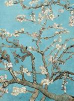 Wizard+Genius van Gogh Almond Blossom Vlies Fotobehang 192x260cm 4-banen