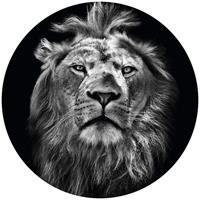 Wizard+Genius Lion Vlies Fotobehang 140x140cm rond
