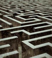 Dimex Labyrinth Vlies Fotobehang 225x250cm 3-banen