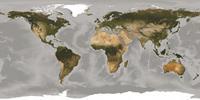 Komar World Fotobehang 500x250cm 10-banen