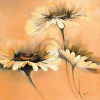 PGM Elena Filatov - Apricot Summer I Kunstdruk 70x70cm