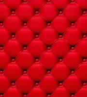 Dimex Chesterfield Vlies Fotobehang 225x250cm 3-banen