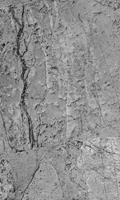 Dimex Concrete Floor Vlies Fotobehang 150x250cm 2-banen