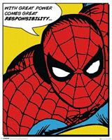 Pyramid Spider-Man Quote Poster 40x50cm