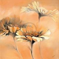 PGM Elena Filatov - Apricot Summer II Kunstdruk 70x70cm