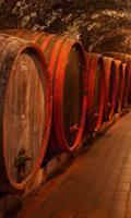 Dimex Wine Barrels Vlies Fotobehang 150x250cm 2-banen