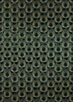 Komar Paon Vert Vlies Fotobehang 200x280cm 4-banen
