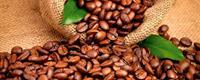 Dimex Coffee Beans Vlies Fotobehang 375x150cm 5-banen
