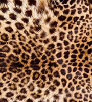 Dimex Leopard Skin Vlies Fotobehang 225x250cm 3-banen