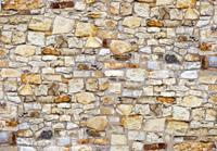 Papermoon The Wall Vlies Fotobehang 350x260cm