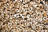 Dimex Timber Logs Vlies Fotobehang 375x250cm 5-banen