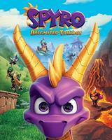 Pyramid Spyro Game Cover Art Poster 40x50cm