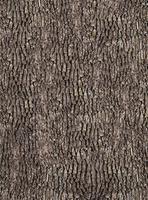 Wizard+Genius Bark Wall Vlies Fotobehang 192x260cm 4-banen