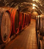 Dimex Wine Barrels Vlies Fotobehang 225x250cm 3-banen