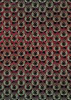 Komar Paon Rouge Vlies Fotobehang 200x280cm 4-banen