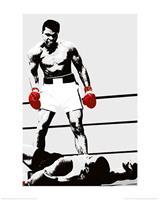 Pyramid Muhammad Ali Gloves Kunstdruk 60x80cm
