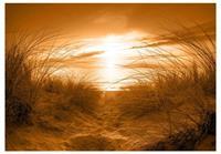 Artgeist Strand Sepia Vlies Fotobehang 100x70cm