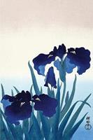 Pyramid Ohara Koson Iris Flowers Poster 61x91,5cm
