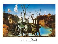 PGM Salvador Dali - Reflections of Elephants Kunstdruk 80x60cm