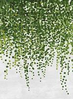 Wizard+Genius Hanging Plants Vlies Fotobehang 192x260cm 4-banen