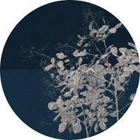 Komar Branch Vlies Fotobehang 125x125cm rond