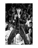 Pyramid Elvis Presley 68 Comeback Special Kunstdruk 40x50cm