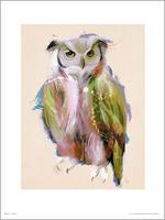 GBeye Owl Paint Kunstdruk 50x70cm